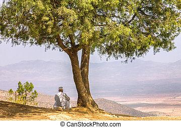 látszó, ember, ov, ülés, fa, hegy, tető, ki