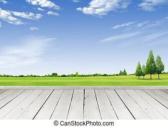 látszó, fából való, felett, ég, tropikus, mező, zöld,...