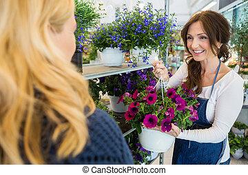 lächeln, salesgirl, ausstellung, blume, pflanze, zu, kunde, in, laden