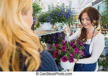 lächeln, salesgirl, ausstellung, purpurrote blume, pflanze, zu, kunde, in, sho