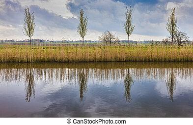 ländlich, niederländisch, landschaftsbild