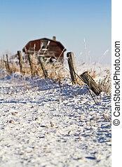 ländlich, winter- szene