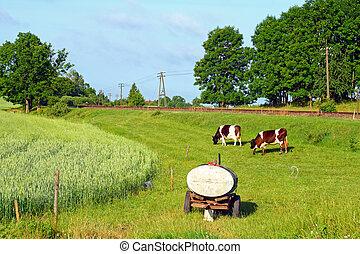 ländliche szene