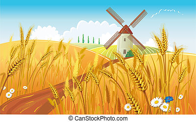 ländlicher querformat, mit, windmühle