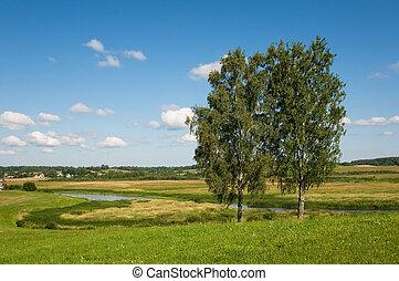 ländlicher querformat, mit, zwei, bäume