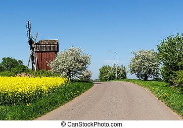 ländlicher weg, per, ein, altes , windmühle, in, a, bunte, springen jahreszeit, landschaftsbild