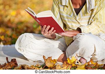 läsning, parkera, bok