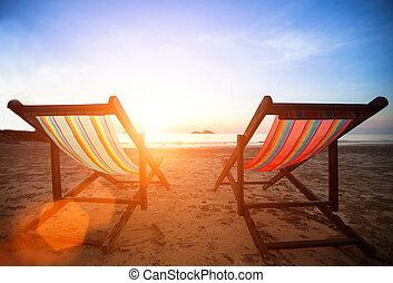 lättingar, på, den, folktom, kust, hav, hos, sunrise.