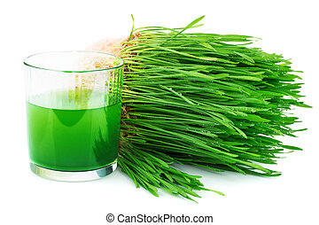 lé, búza, sprouted, wheatgrass
