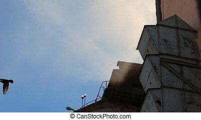 légszennyeződés, által, gyár, túlzott, quantities, közül, szilárdságok, introduces, bele, a, levegő