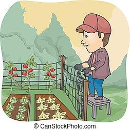 légume, homme, jardin, barrière, paysan