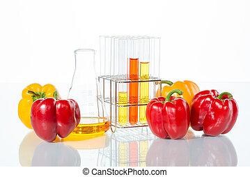 légume, poivre, modification génétique, essai