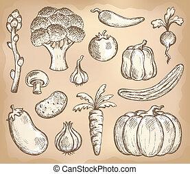 légume, thème, 3, collection