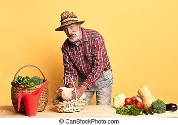 légumes, bois, oeufs, cru, tenue, paysan, panier, frais, poule, lotissements, table