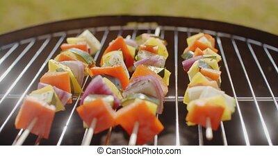 légumes, frais, coloré, kebabs, sain
