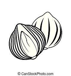 légumes frais, oignon ail