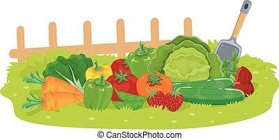 légumes, jardin, illustration, fruits