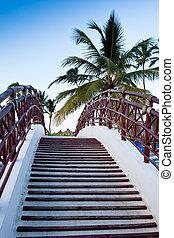 lépcsőház, közül, a, bridzs, alatt, pálma, kék ég
