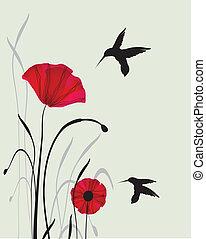 léto, květiny, krmení, kolibřík
