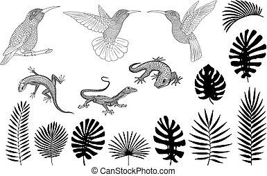 lézards, feuilles, monstera, exotique, silhouettes, vecteur, paume, banane, gecko
