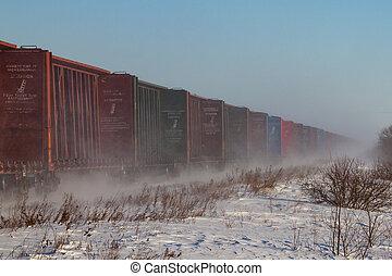 línea, de, vacío, railcars, azotar, arriba, nieve