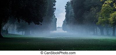 línea, niebla, árboles