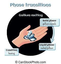líquido, sólido, transição, gallium, state., melting., fase