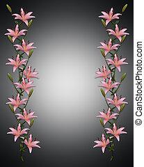 lírio asian, flores, borda, ligado, pretas