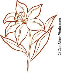 lírio, flor, pictograma
