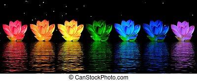 lírio, flores, chakras