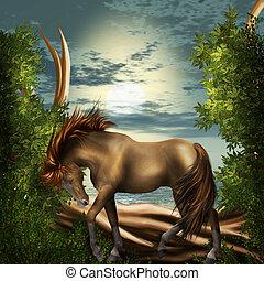 ló, alatt, varázslatos, erdő