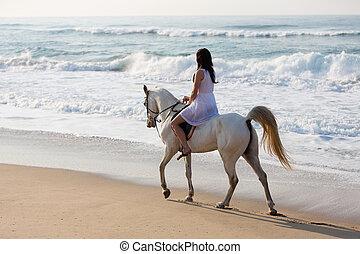 ló, tengerpart, lovagol, leány