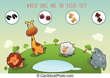 lógico, serie, de, colorido, animales