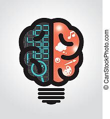 lök, vänster, rättighet, idé, hjärna