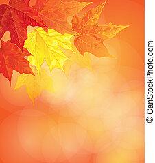 lönn leaves