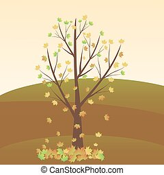 lönn träd, höst