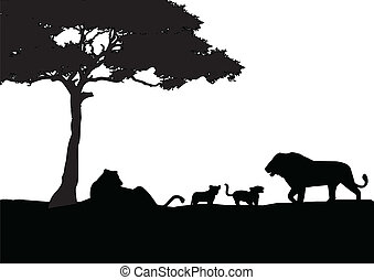 löwe, silhouette, familie