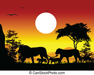 löwe, silhouette, reise, schoenheit