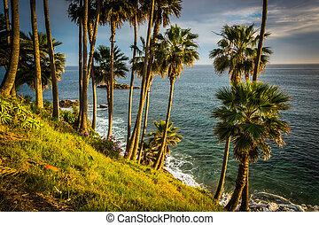 la, árboles, pacífico, parque, palma, heisler, océano, vista