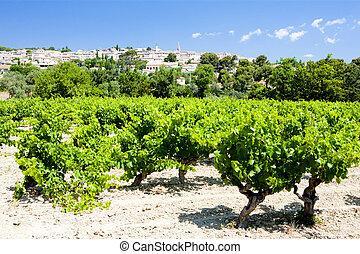 La Cadiere, Provence, France