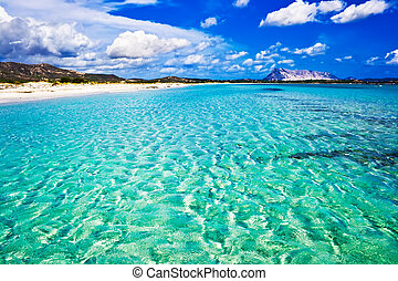 La Cinta Beach in Italy - Clear sea and sandy beach La...