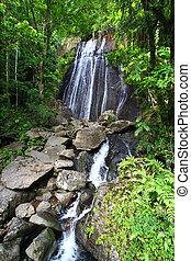 La Coca Falls - Puerto Rico - La Coca Falls in the famous El...