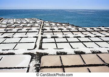 la, kanarie, extractie, eilanden, palma, zout