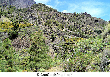 La Palma is one of the Canary Islands in the Atlantic Ocean next to Africa
