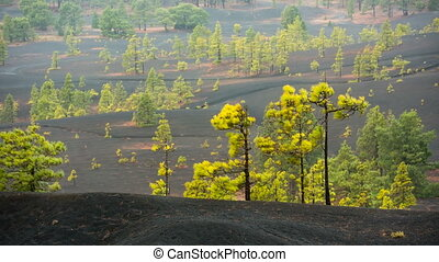 La Palma Lava Landscape And Rain, Spain - Tradewind clouds...
