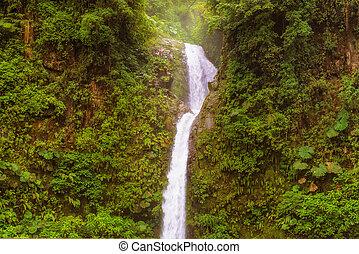 La Paz, The Peace, waterfall in central Costa Rica - La Paz...