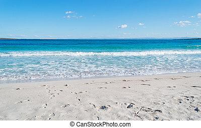 world famous La Pelosa beach on a clear day