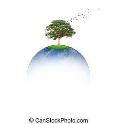 la terre, concept, sauver