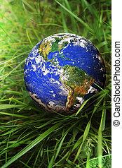la terre, herbe, vert