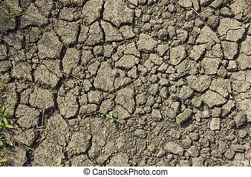 la terre, texture, surface